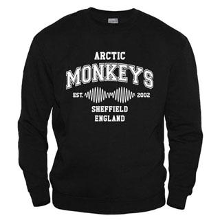 Arctic Monkeys 15 - Свитшот мужской