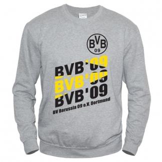 Borussia 01 - Свитшот мужской